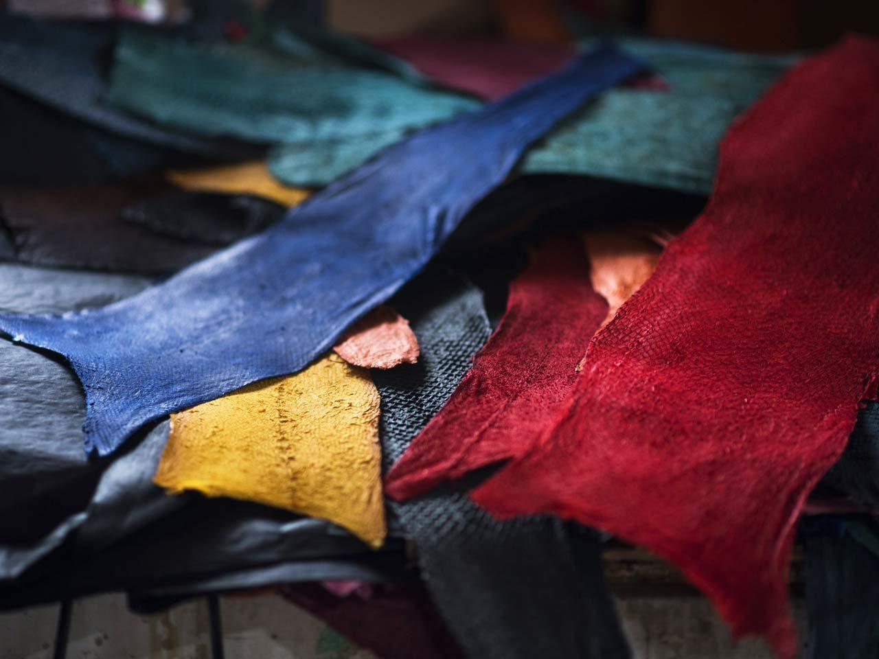 Femer palette coloris