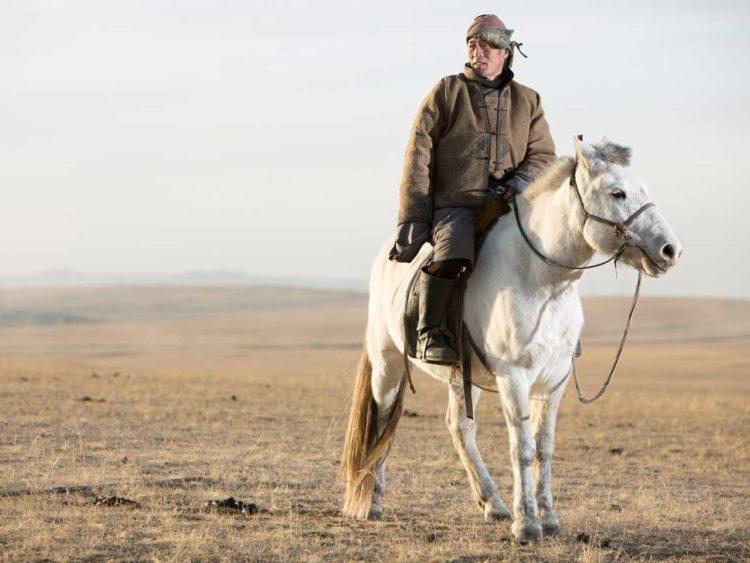 Aduu Mal Mongolie cuir équin