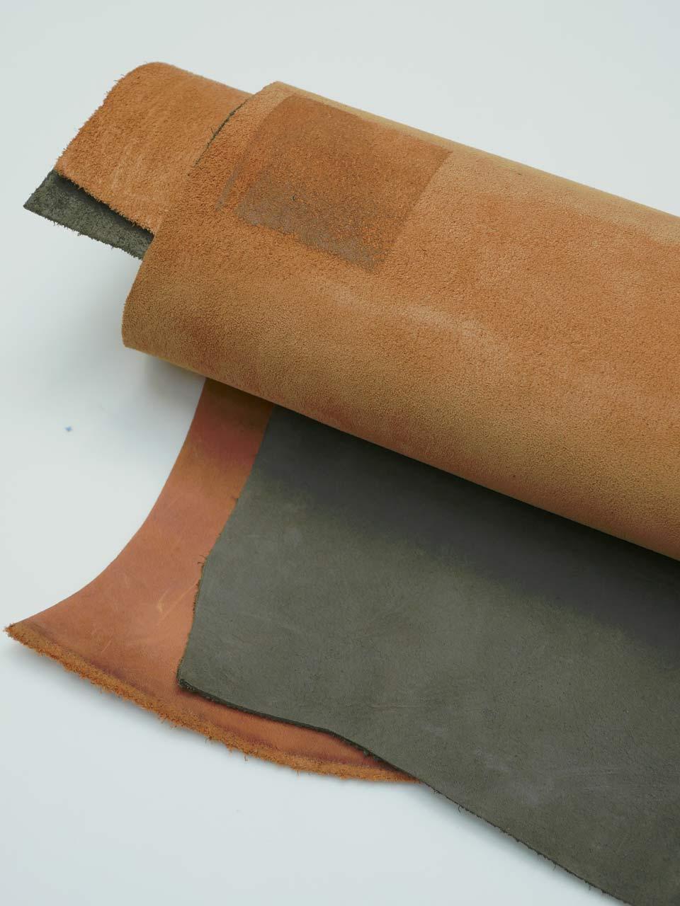 cuir-tannage-Rhubarbe