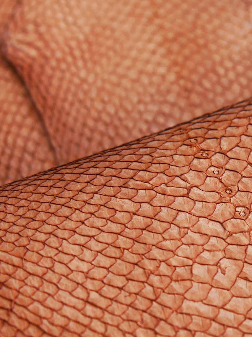 Ictyos Cuir Marin poisson saumon