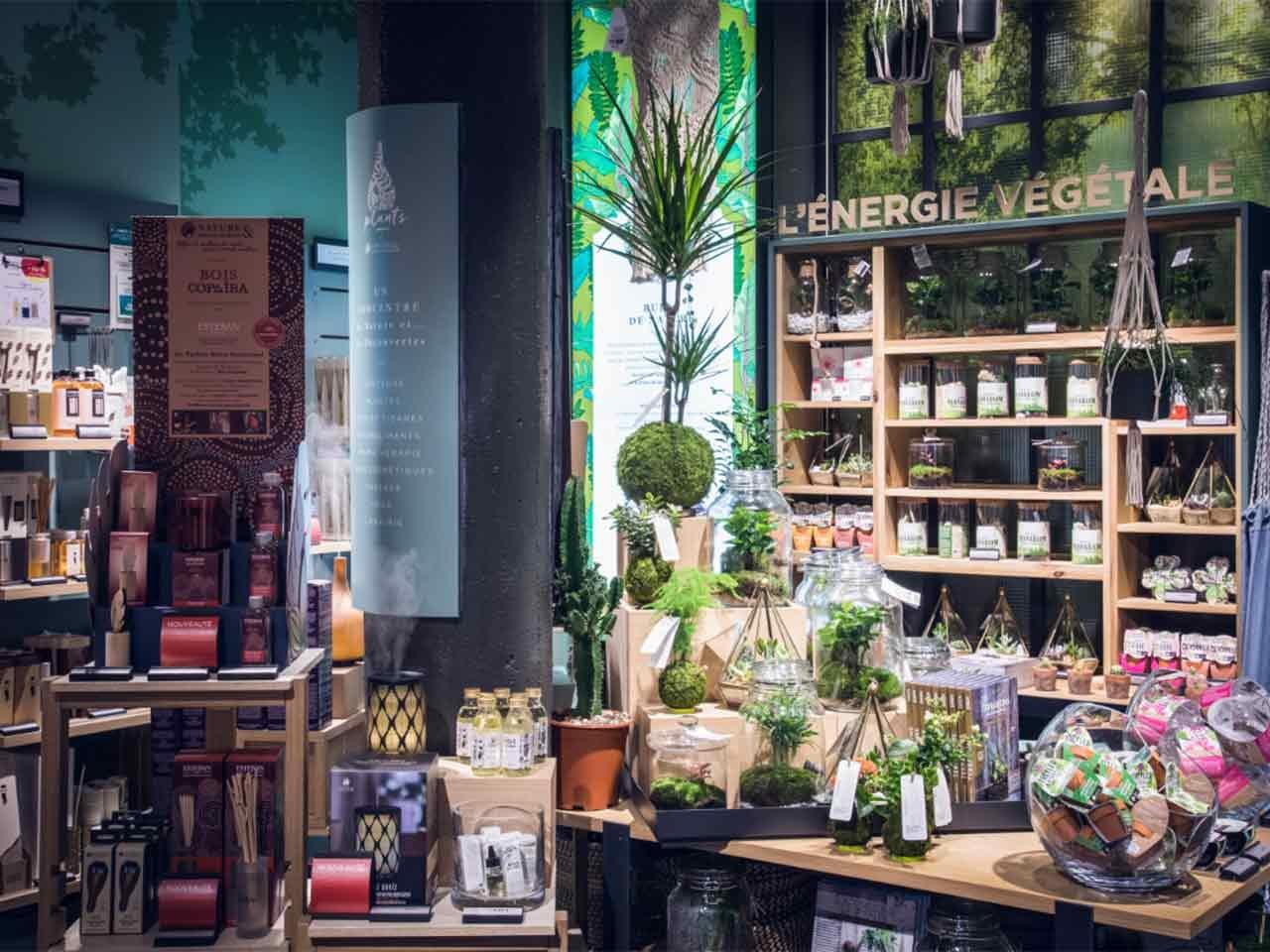 Nature & Découvertes magasin univers végétal