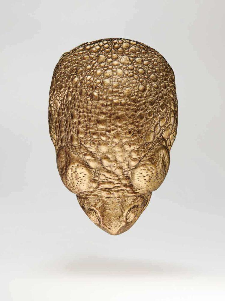 kobja porte monnaie cuir crapaud