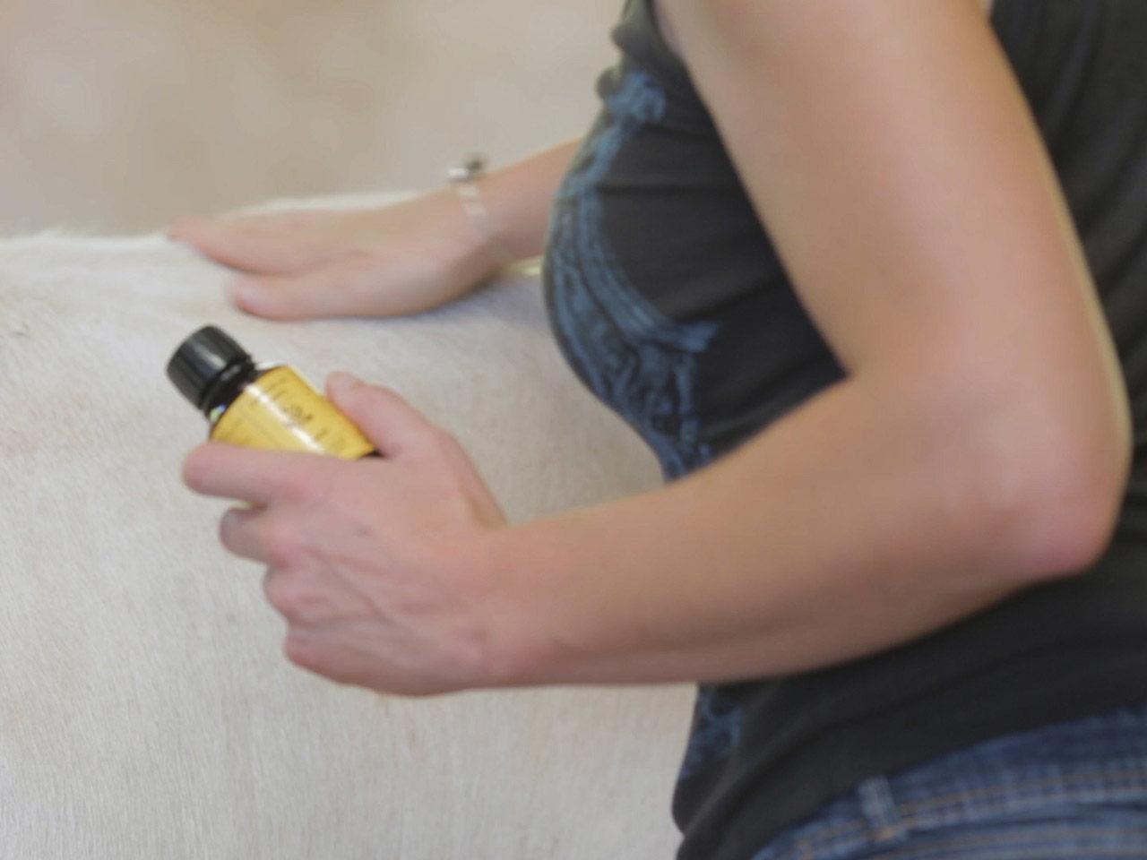 massage boeuf ethique emilie jeannin cuir abattoir