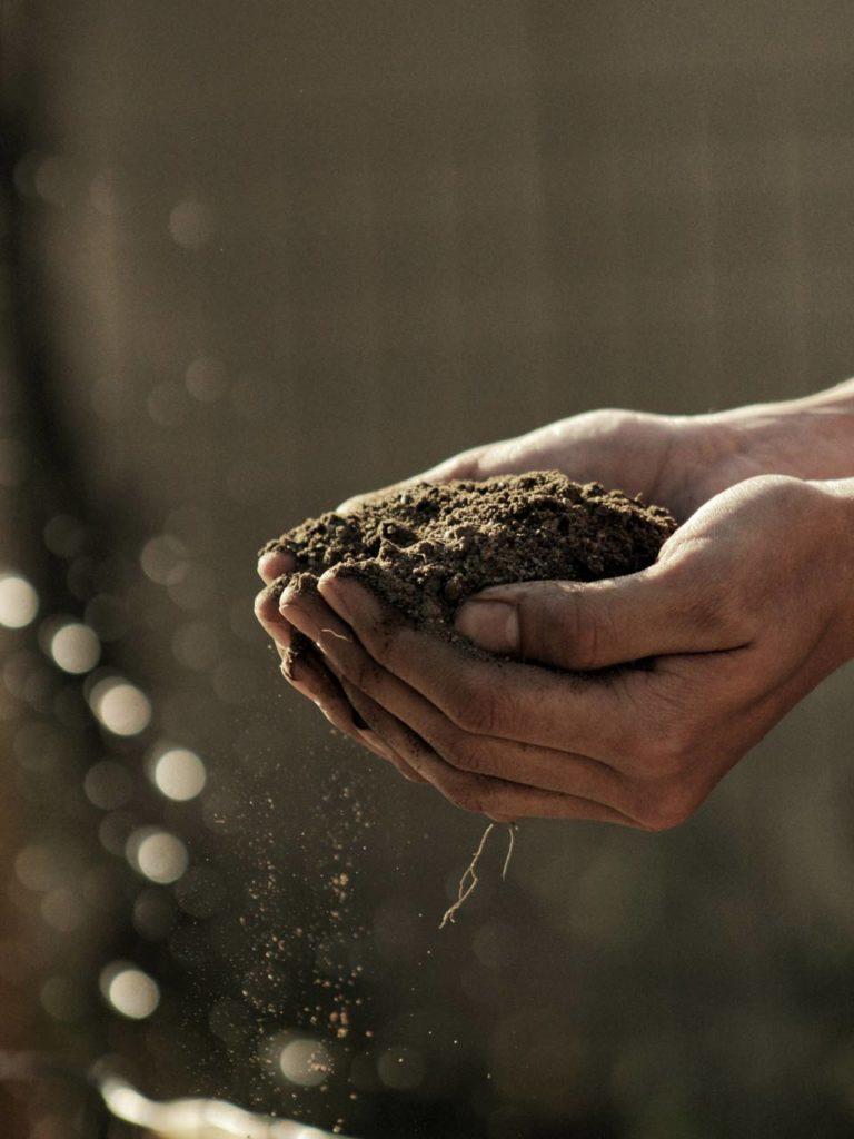 biodegradabilite cuir